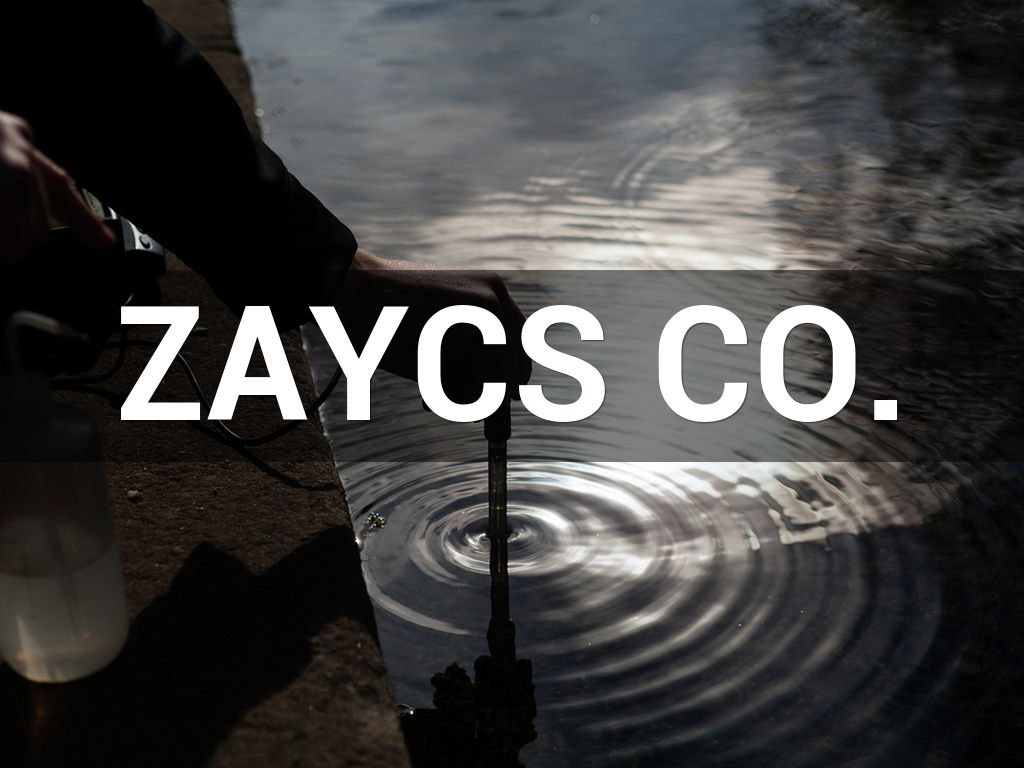 ZAYCS Co.