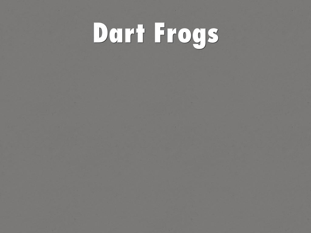 Dart Frogs