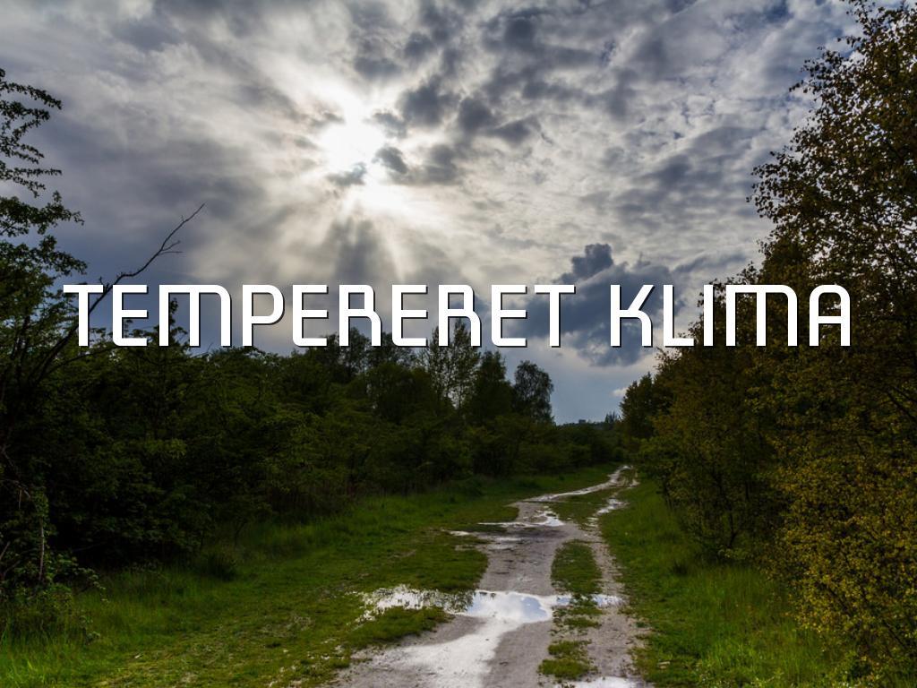 tempereret klima