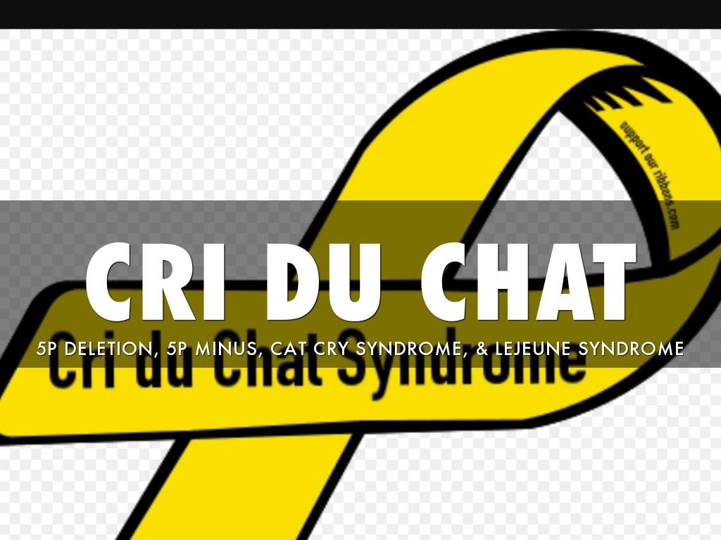 Cry cri du audio chat Cri du