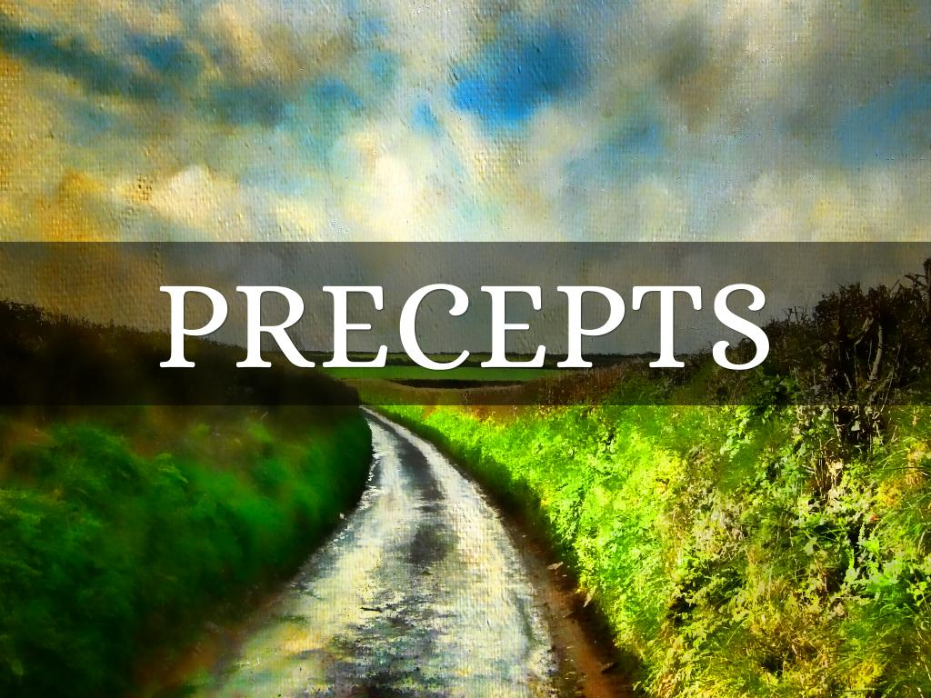 Precepts By Hannah Bennetts