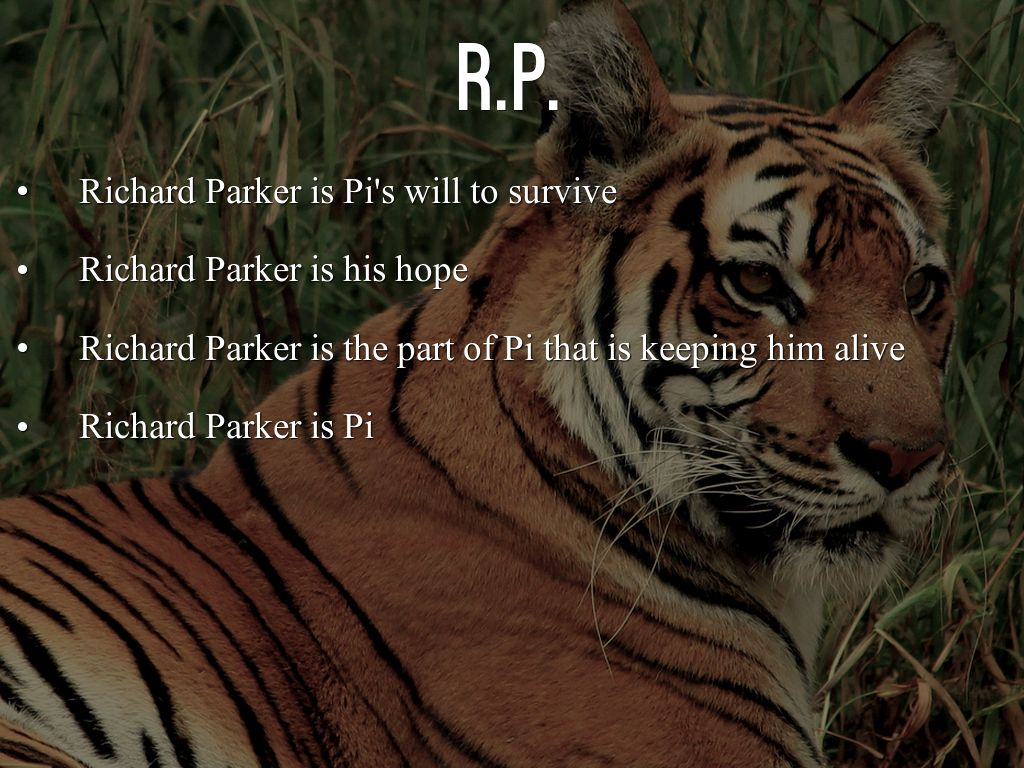 life of pi essay about survival An essay written on the theme of survival life of pi: survival to look out with idle hope is tantamount to dreaming one's life away.