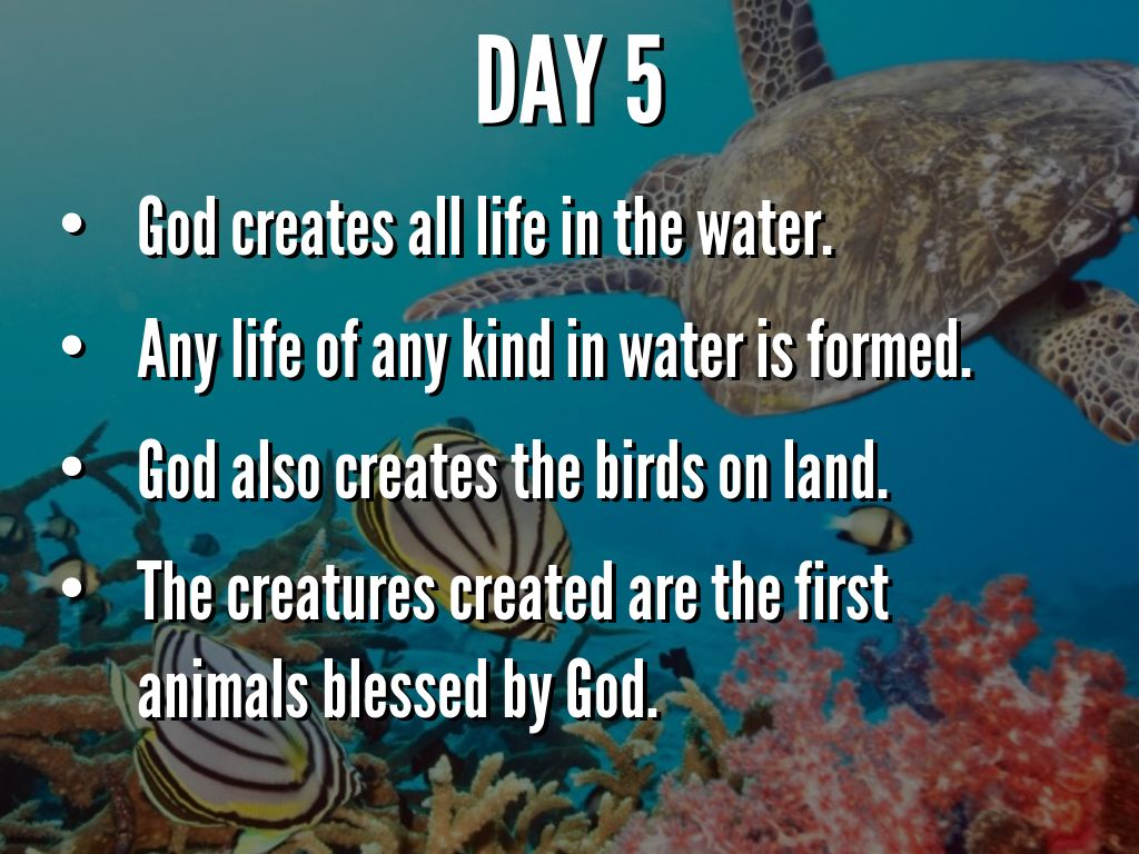 7 days of creation by justin deslauriers
