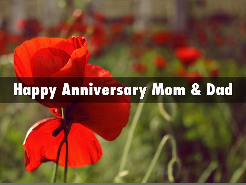 Happy anniversary mom dad by ms goudeau