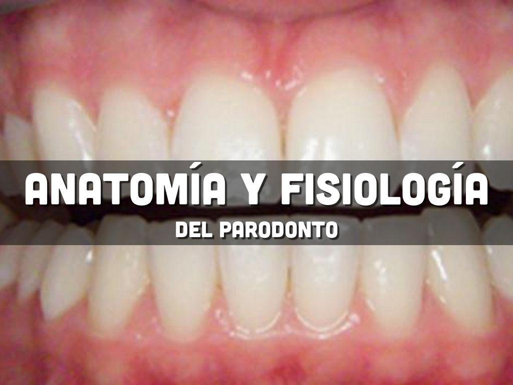 ANATOMíA Y FISIOLOGíA by Abii Meza