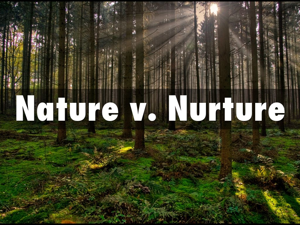 nature v nurture An adoptive mother muses on nature vs nurture when it comes to raising adopted children, and the need for parents to accept kids as they are.