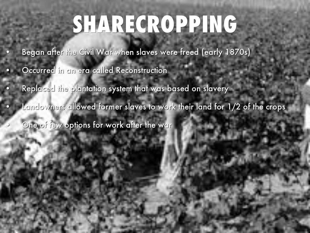 sharecroppers reconstruction era of the united Test your knowledge on the reconstruction period of us history tennessee eoc content is specifically targeted take this quiz the decision of the supreme court in the 1896 plessy v.