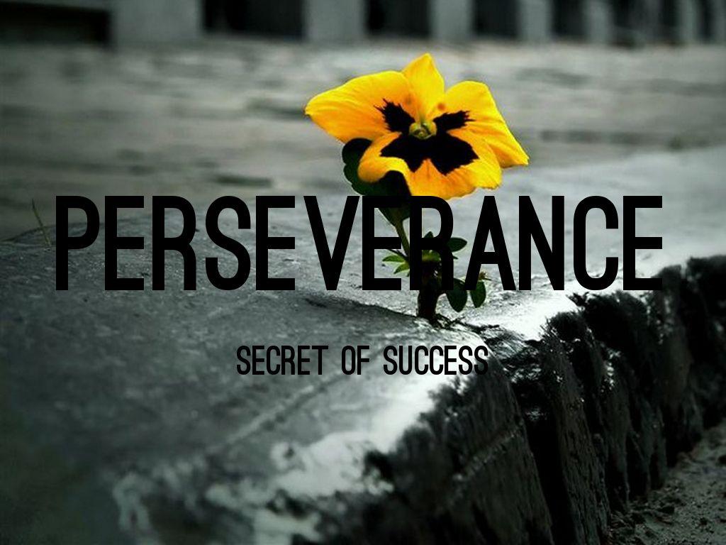 perseverance by earl e appleby jr