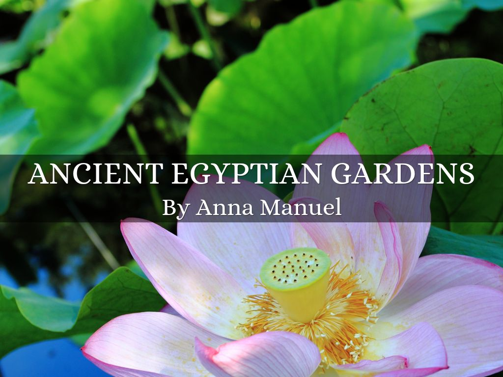 Ancient egyptian gardens by anna manuel ancient egyptian gardens izmirmasajfo