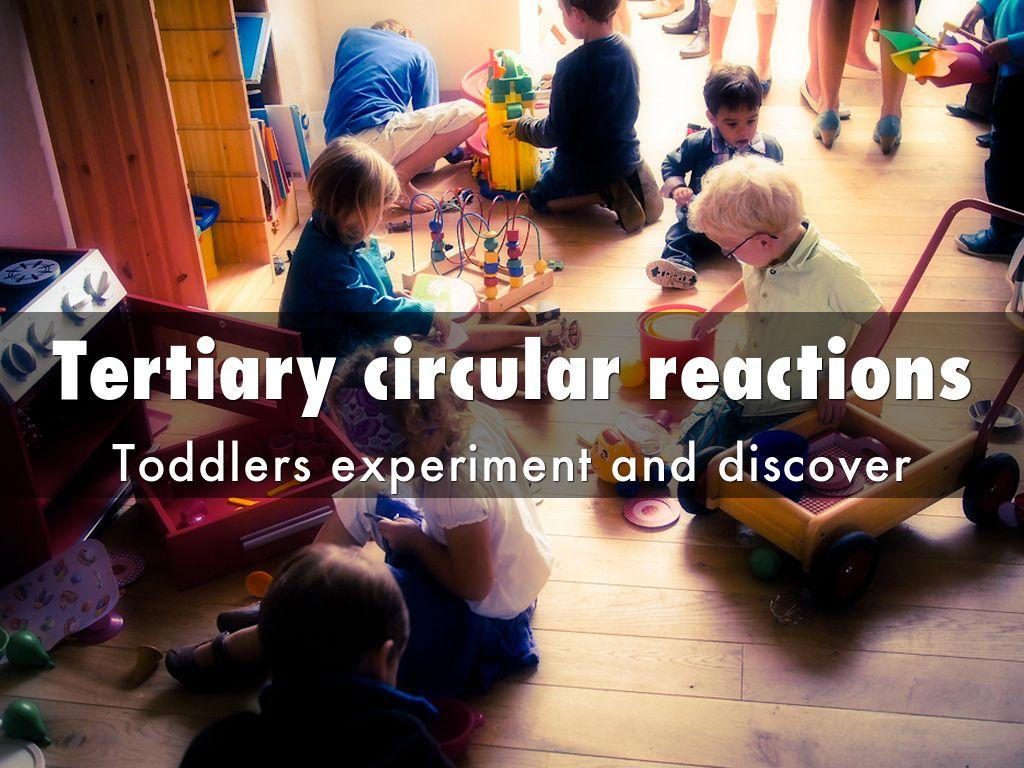 tertiary circular reactions