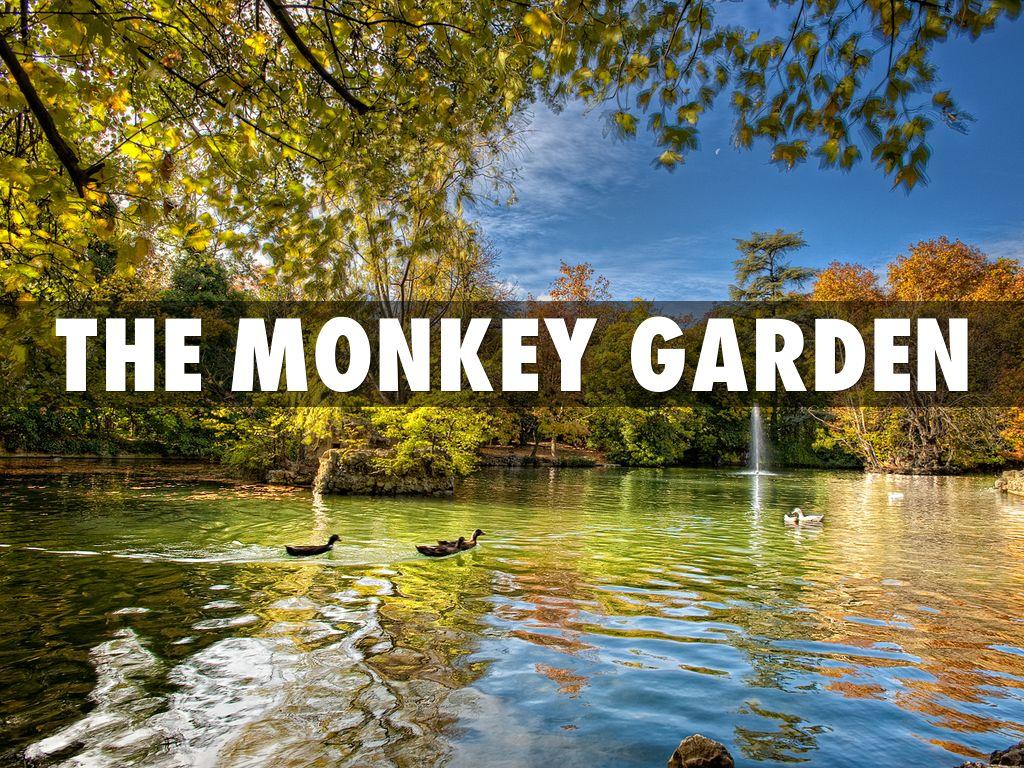 the monkey garden