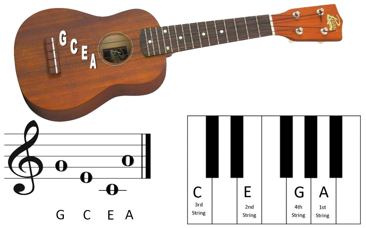 Start playing the ukulele by tarun durga hexwebz Images