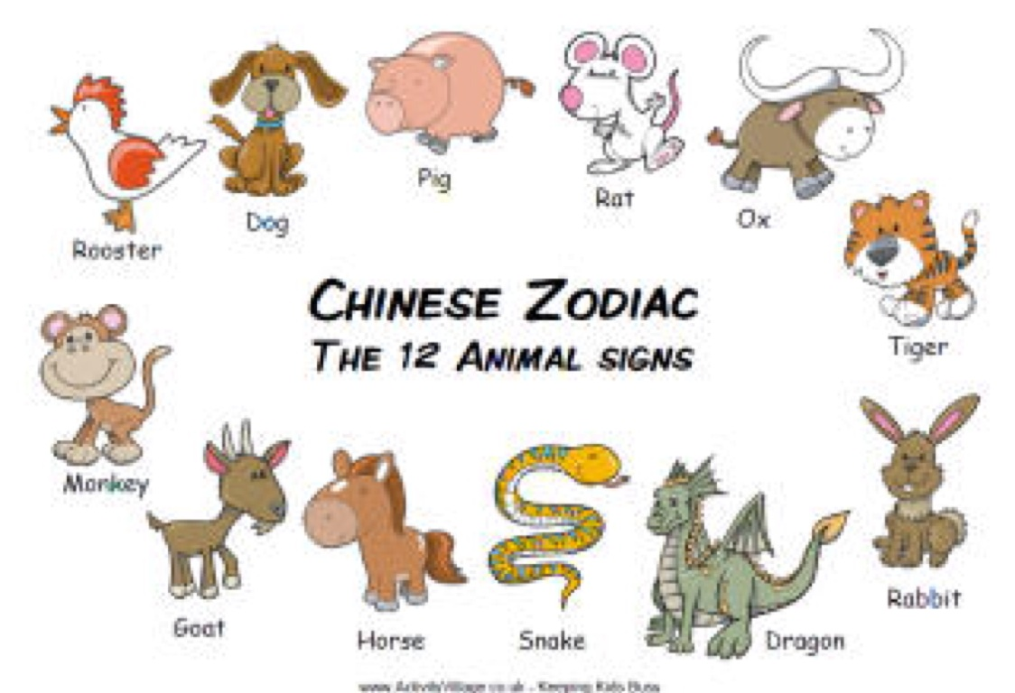 In order of year in animals