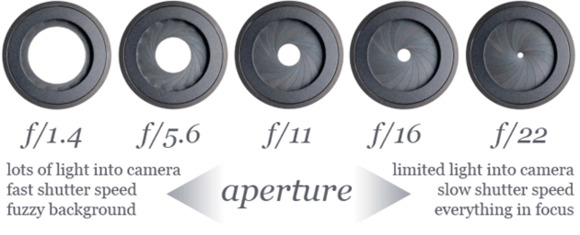 Aperture by brooke haller pooptronica Images