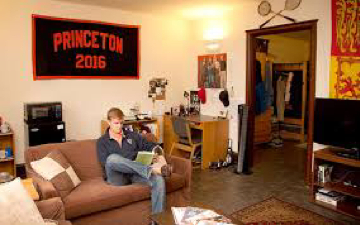 Pleasing Princeton University By Matthew Stamey Home Interior And Landscaping Pimpapssignezvosmurscom