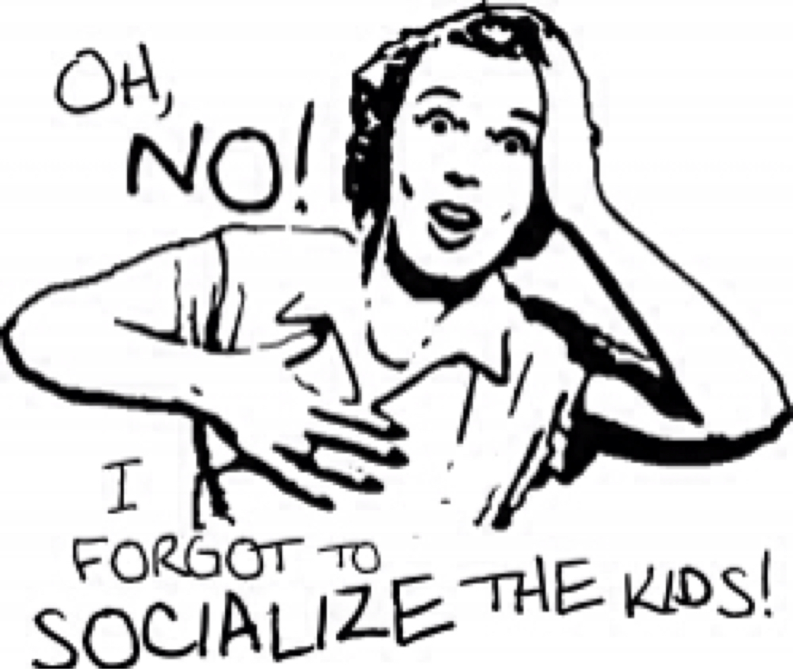 the issue of socializing children into conventional masculinity and femininity