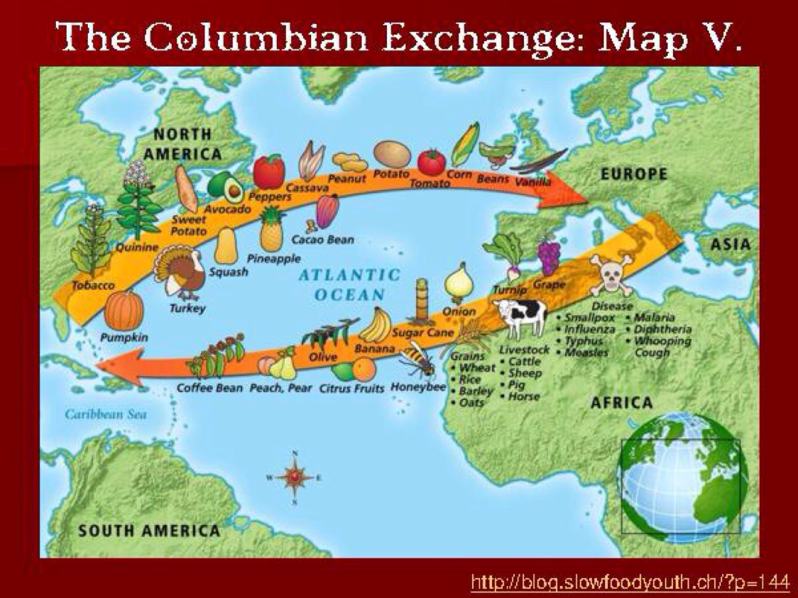 Worksheets Columbian Exchange Worksheet exploration by taina gillison