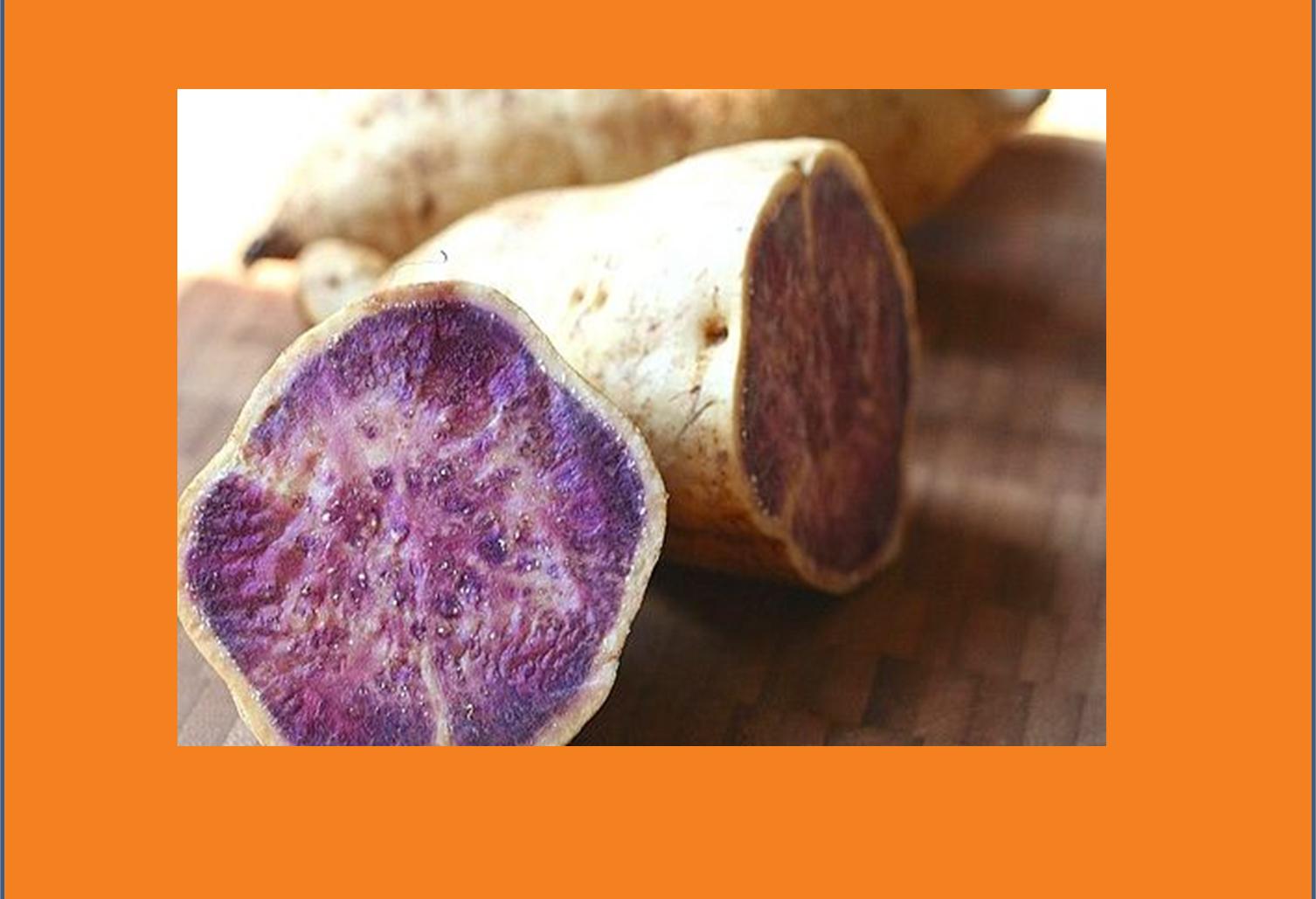 Sweet Potato Superfood By Joe Lewis Yam Wiring Diagram