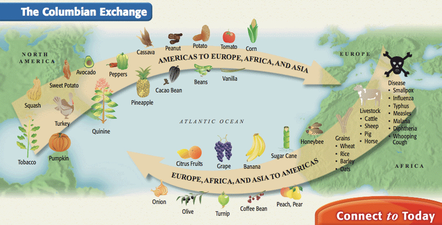 positive effects of the columbian exchange