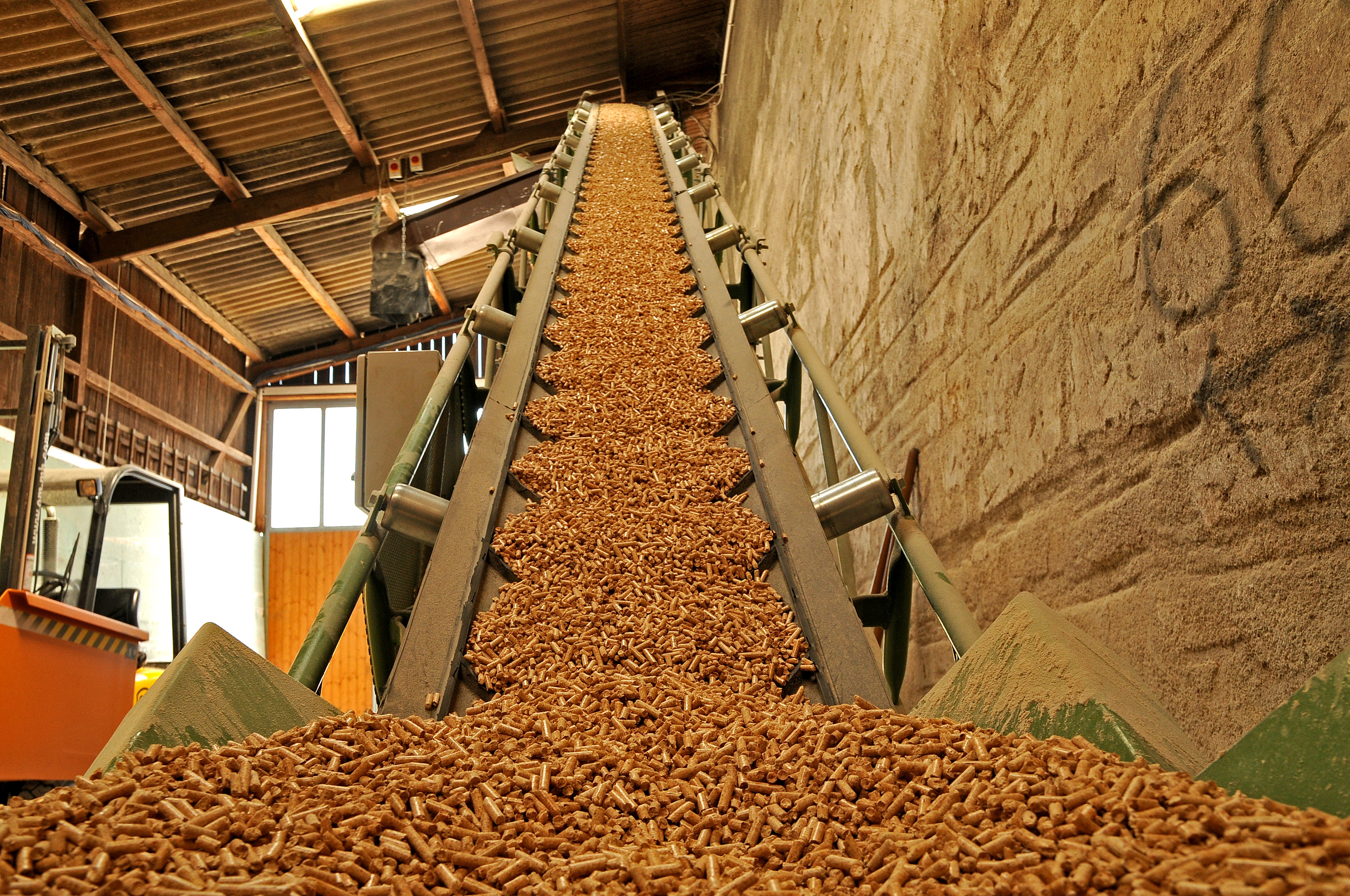 Biomass Energy and Fuels by madelined
