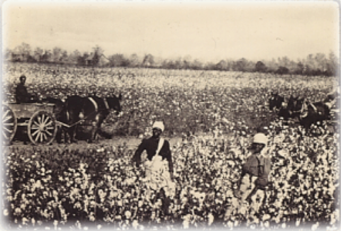 slavery southern life from 1840 to 1860 Get an answer for 'what was the impact of slavery on the southern economy' and find homework help for other history questions at enotes 1860, slave-produced.