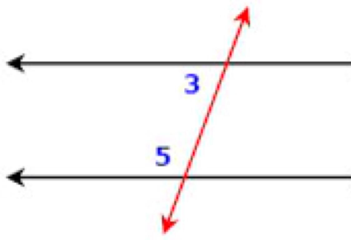 Same Side Interior Angles