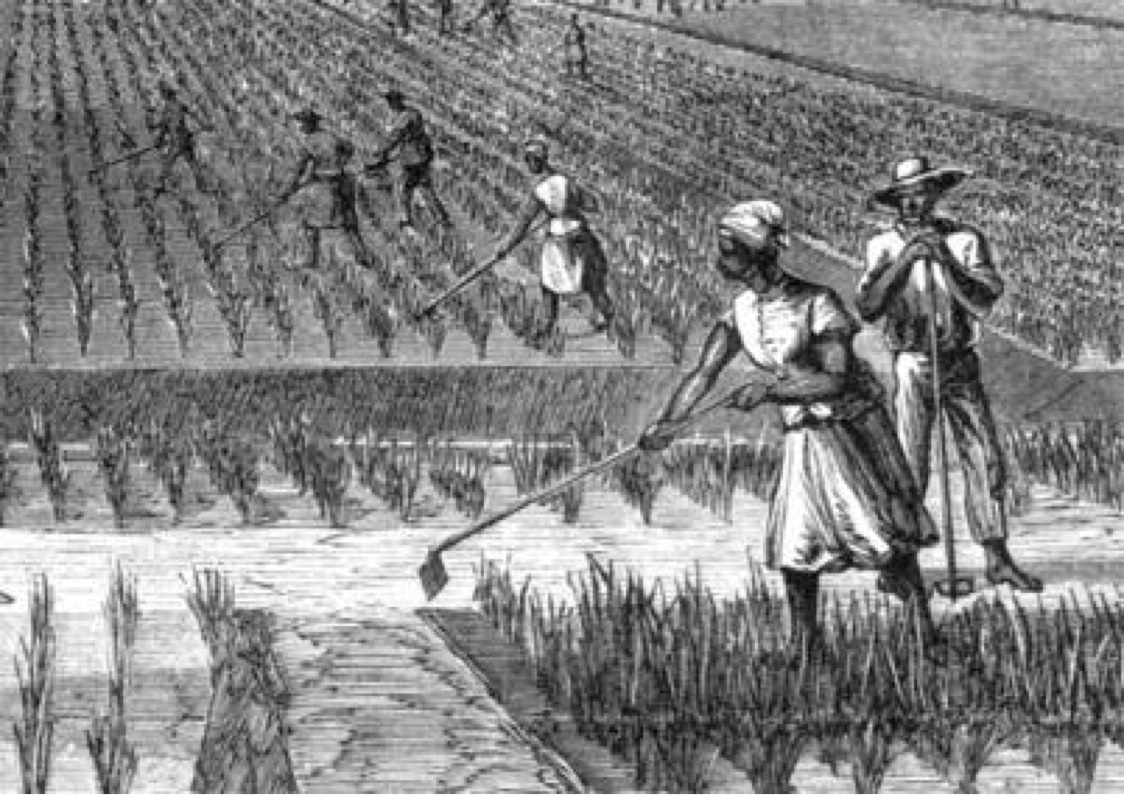 slavery primary source project Your internet source for history a resource on slavery for lovers, students and teachers of history.