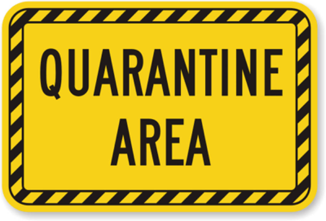 graphic relating to Quarantine Sign Printable named Novels through Emmi Pinch