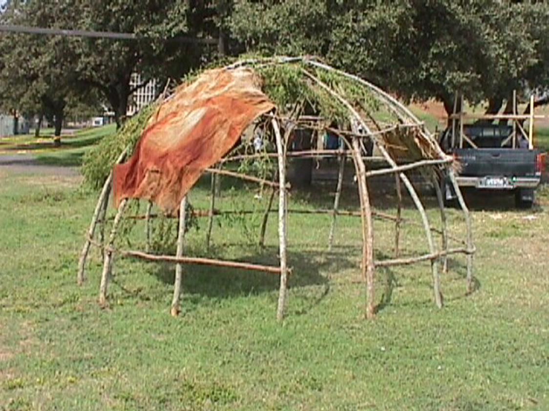 native tribe by alecia paskins