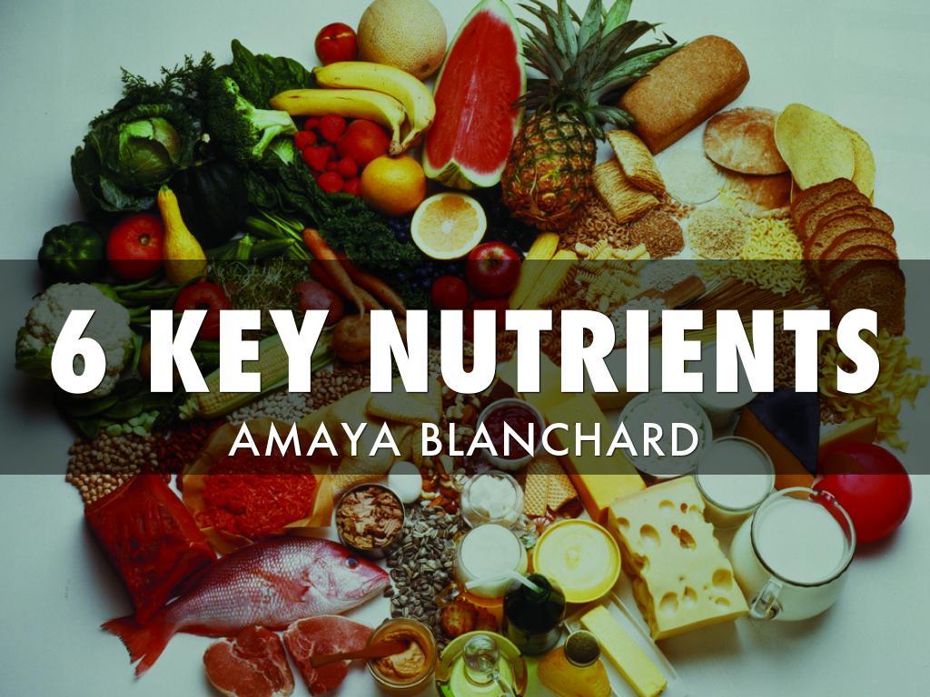 6 Key Nutrients