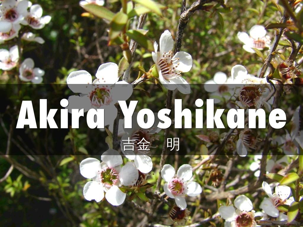 Akira Y NOV2019