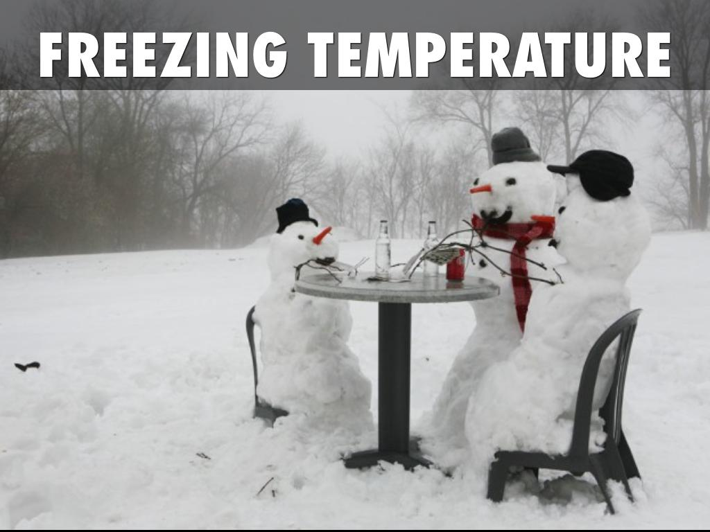 what temperature do things freeze