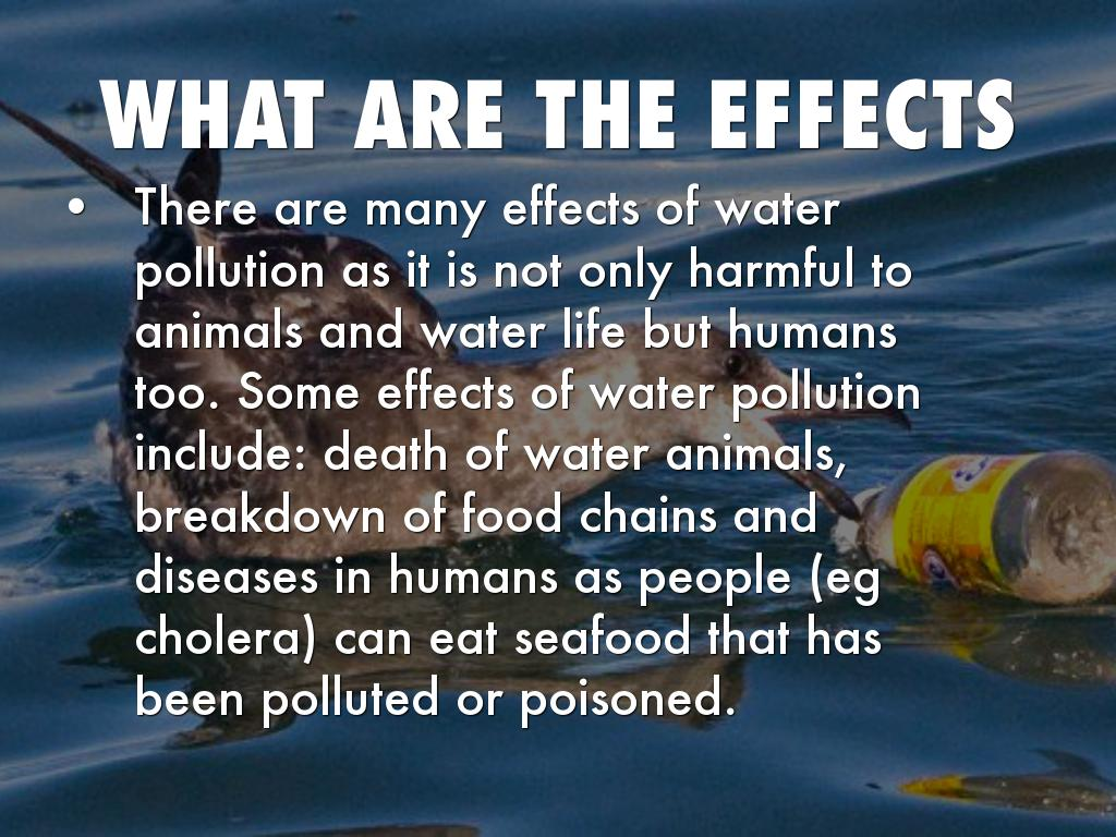how to stop water pollution facts