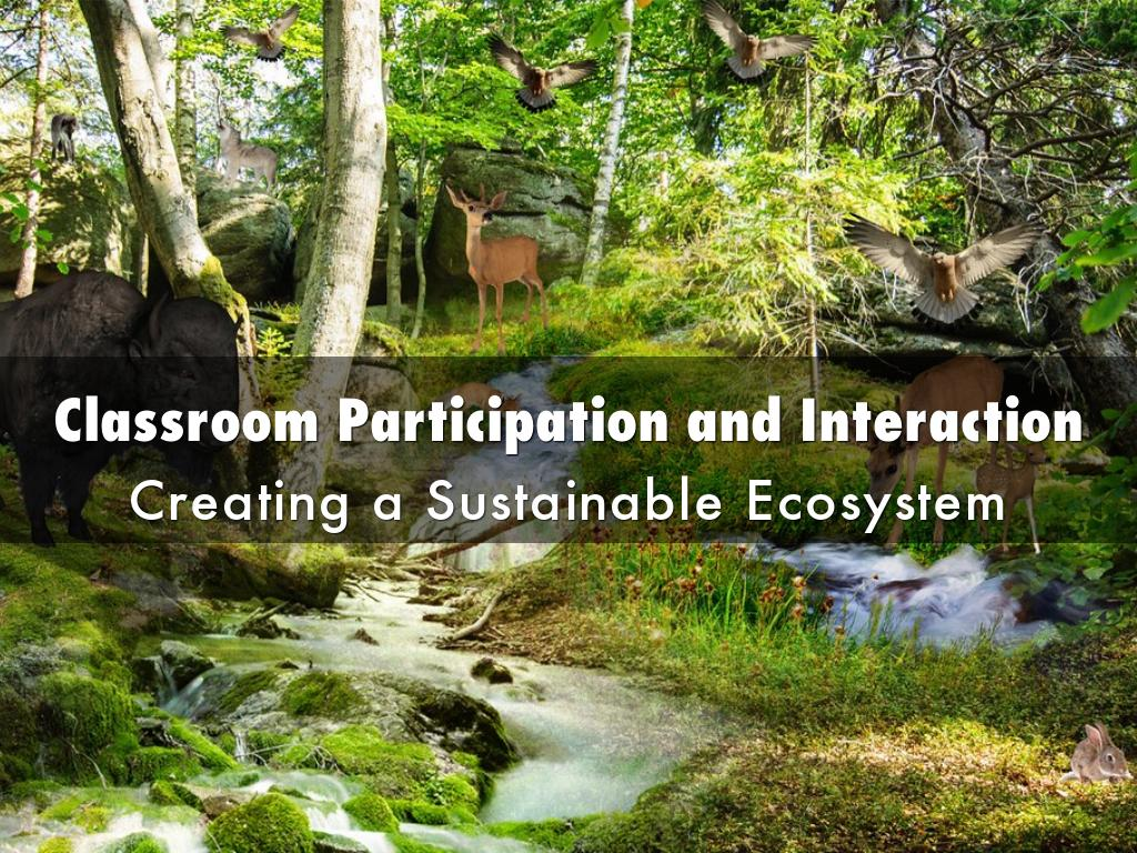 Classroom Participation and Interaction