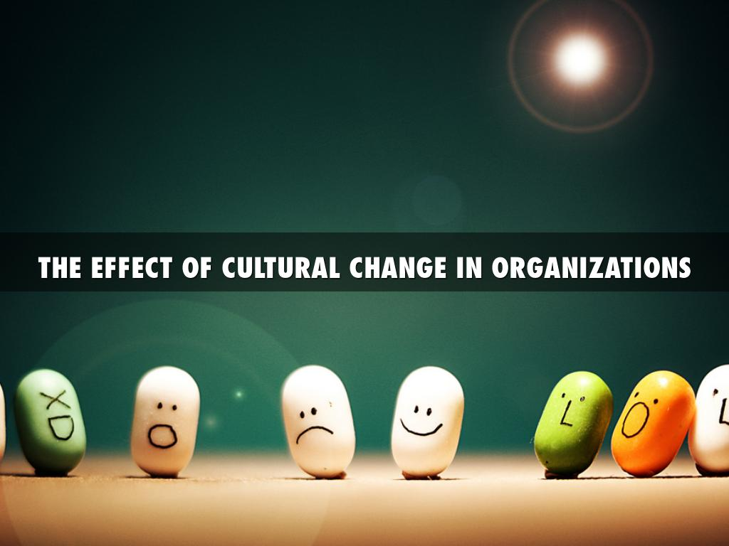 effects of culture on learning and