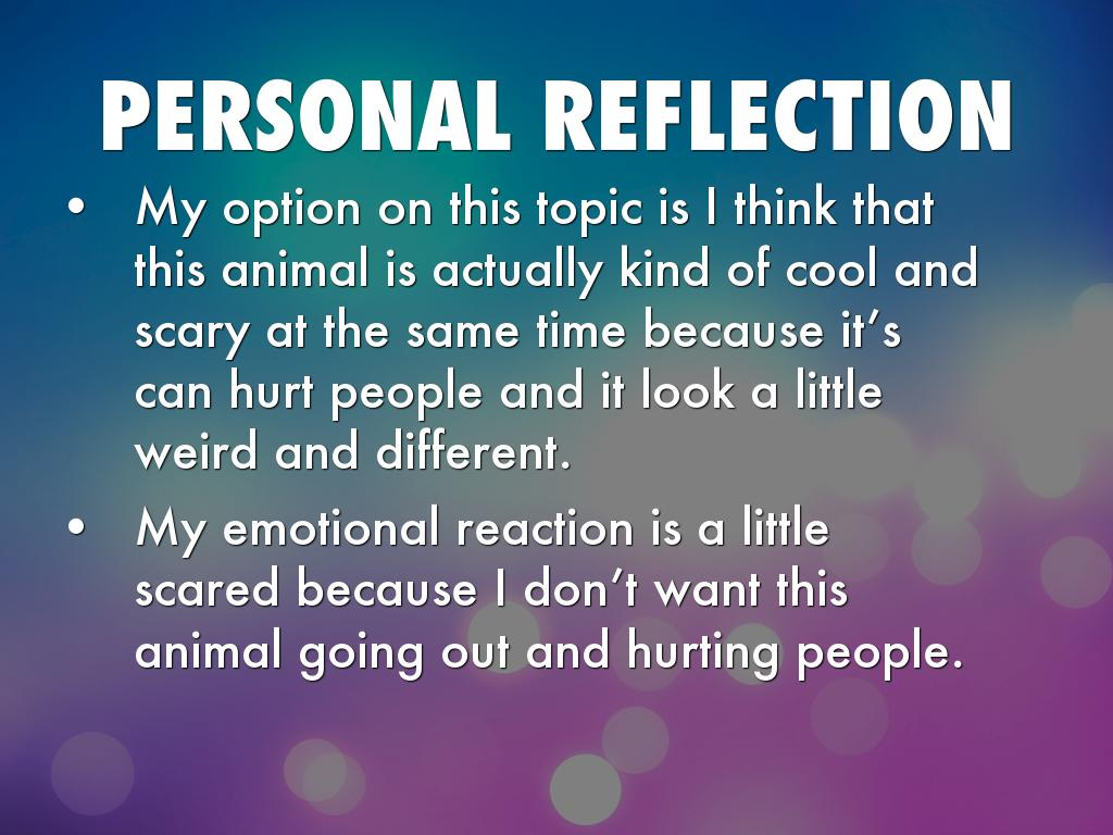 personal reflective