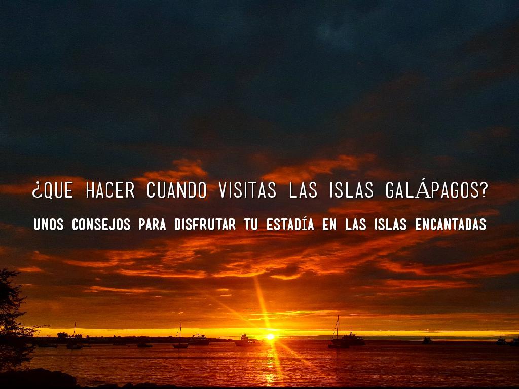 ¿Que hacer cuando visitas las islas Galápagos?