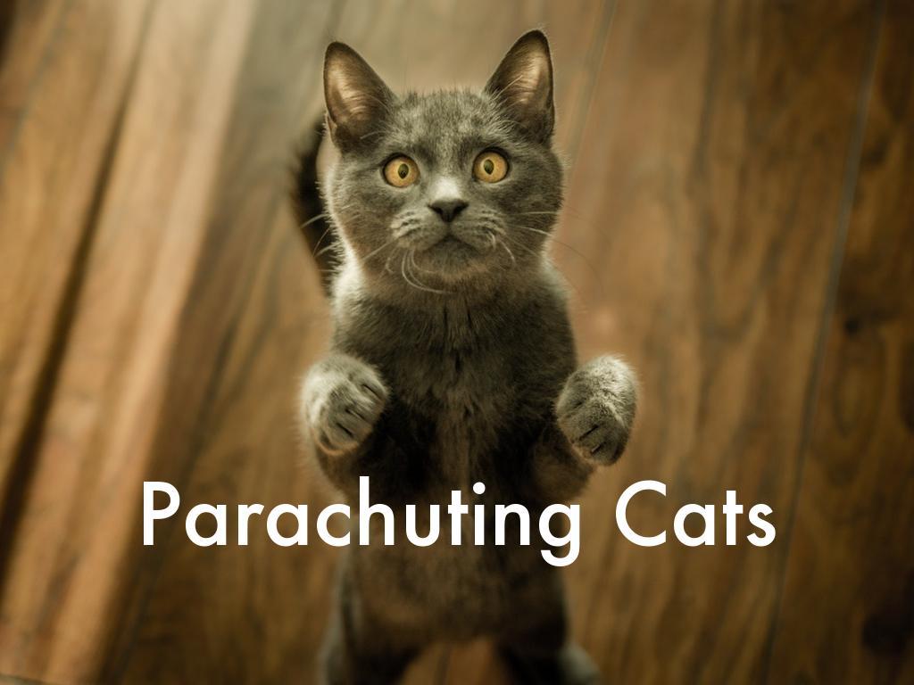 Parachuting Cats