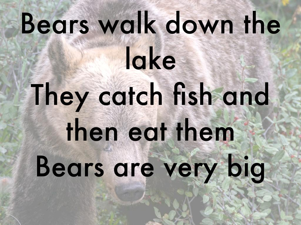 Bears By Fred