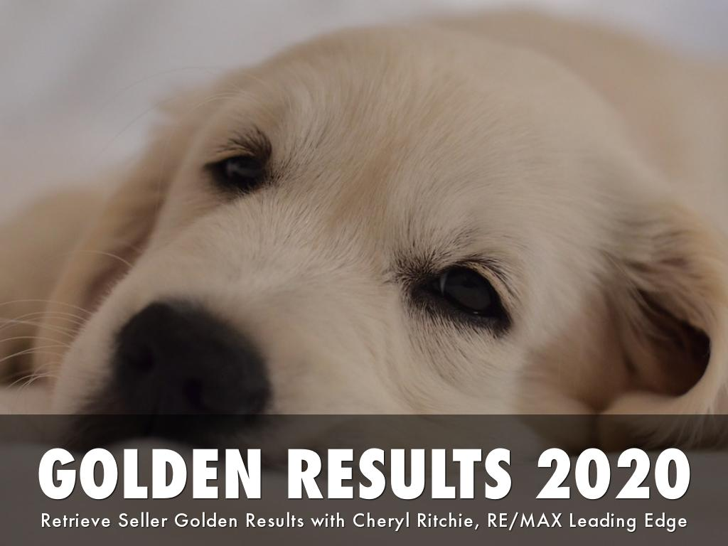 2019 Golden Results For Sellers