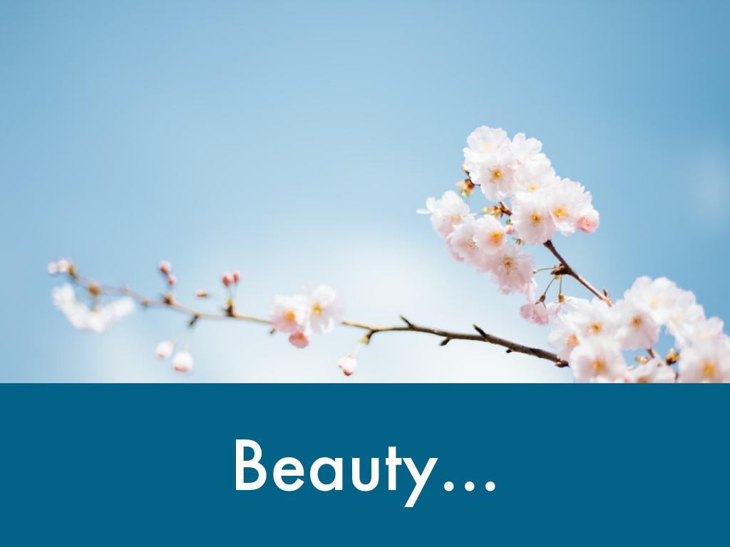 Beauty!