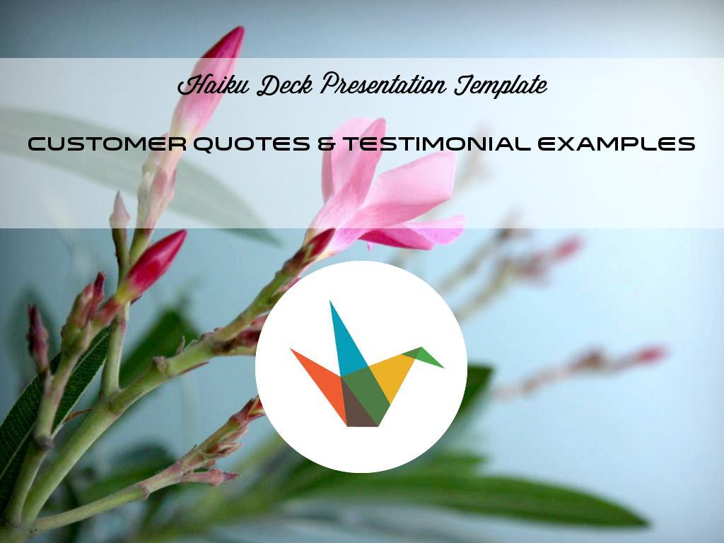 Copia de Customer Quotes & Testimonial Examples