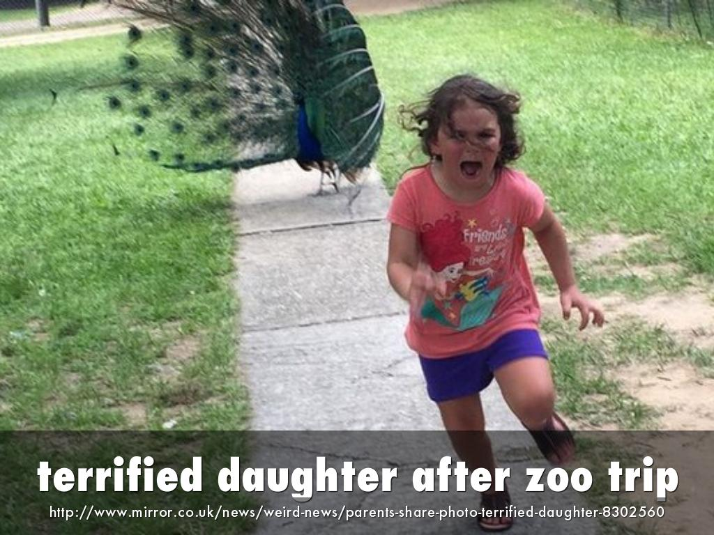 terrified daughter after zoo trip